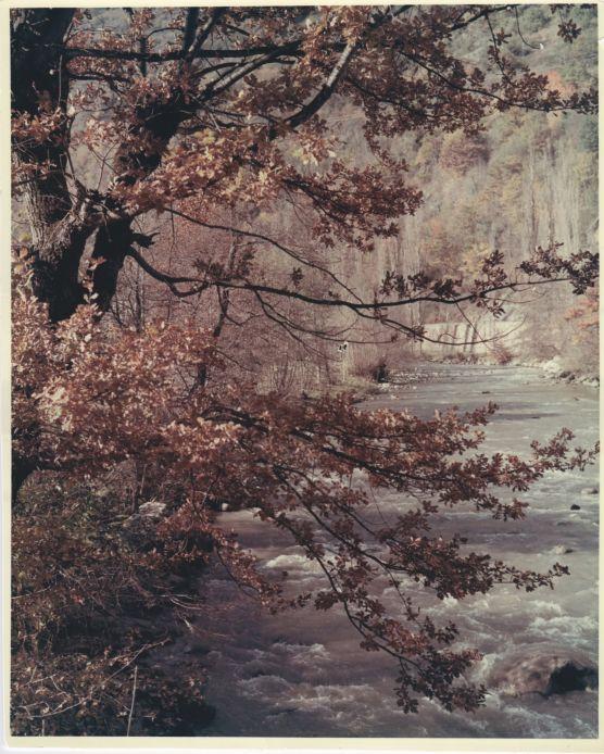 Garona river in Autumn