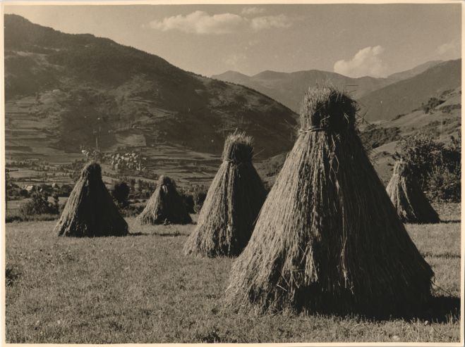 Hay in the Aran Valley