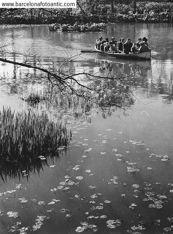 En  l'estany del parc de la Ciutadella