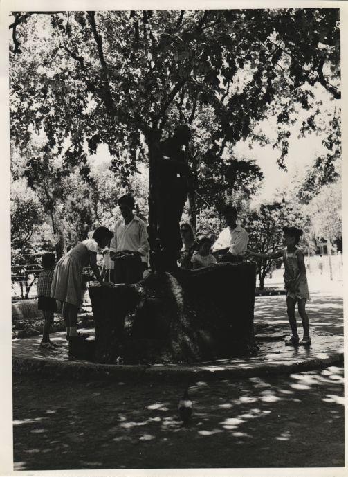 A la font. Barcelona, 1958