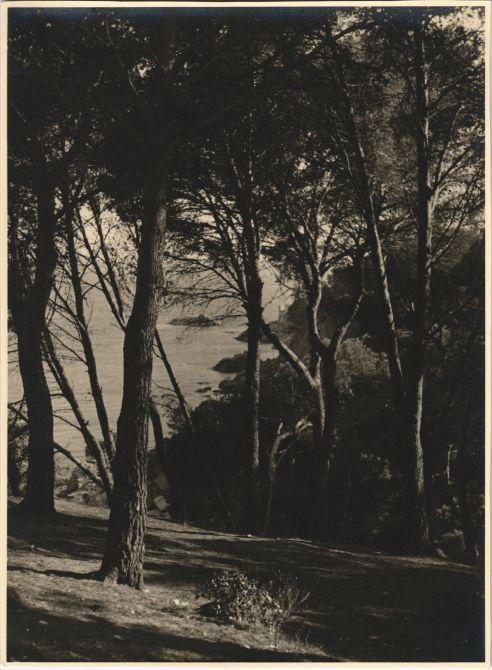 Sant Antoni de Calonge, 1952